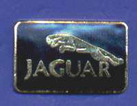 JAGUAR PIN
