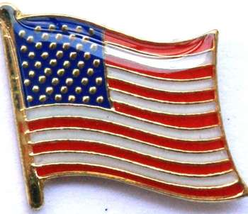 USA FLAGGA PIN